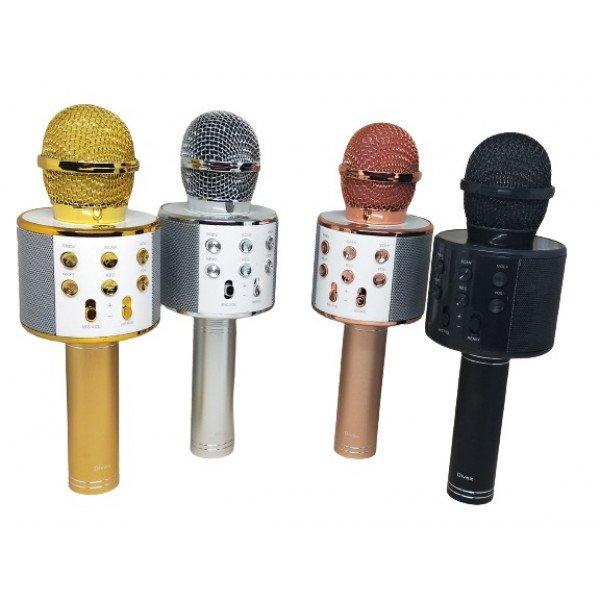 DM 620 Karaoke Mikrofon